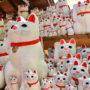 湯房蔵屋JOB(女の子求人)サイト_商売繁盛の招き猫たくさん